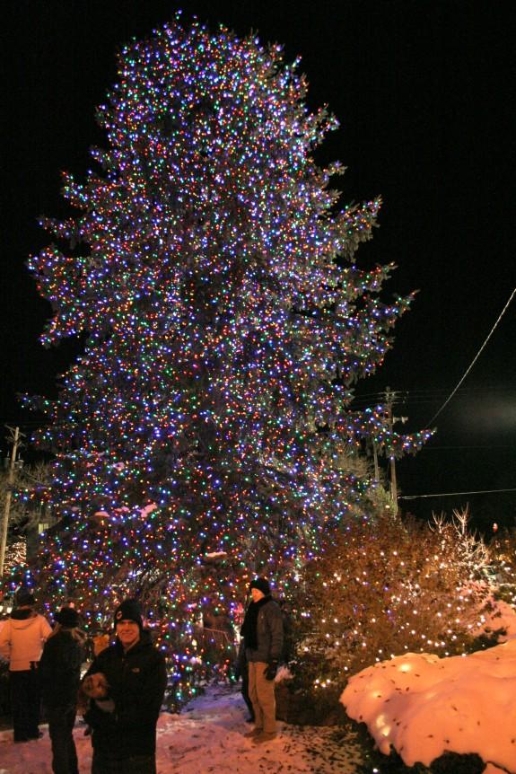 Ryan and the Christmas tree!